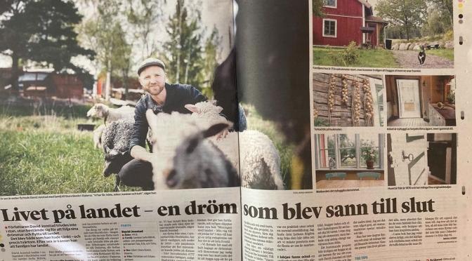 Intervju i Sydsvenskan